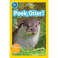 Peek, Otter! (Paperback) NGKids
