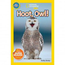 Hoot, Owl! (Paperback) NGKids