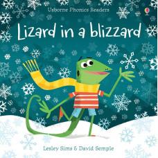 Lizard in a blizzard (Paperback)