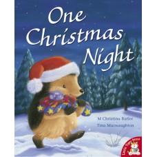 One Christmas Night (Paperback) M Christina Butler & Tina Macnaughton