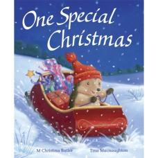 One Special Christmas (Paperback) M Christina Butler & Tina Macnaughton