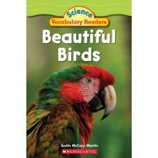 Beautiful Birds (Paperback)