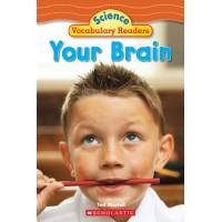 Your Brain (Paperback)