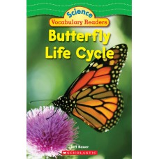 Butterfly Life Cycle (Paperback)