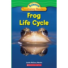 Frog Life Cycle (Paperback)