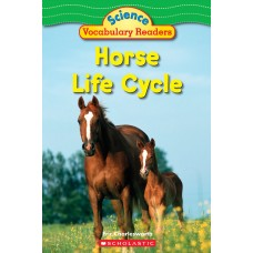 Horse Life Cycle (Paperback)